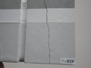IMGP9689