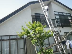 福岡市南区寺塚K様【外壁:優れた伸縮性で防水性の高い塗料で塗装】:施工前