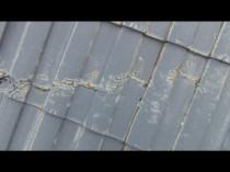 東 屋根 ひび割れ