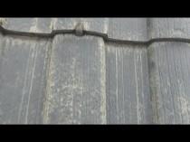 屋根 変退色