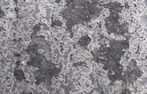 西 屋根 塗膜剥離拡大 ③