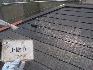 屋根に生える黄色の苔について