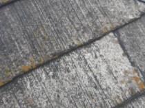 屋根 南 塗膜剥離