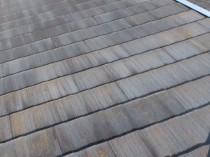 屋根に苔・藻