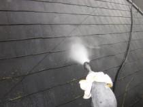 屋根 高圧洗浄3