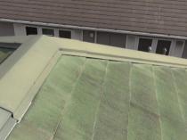 屋根 黒カビ