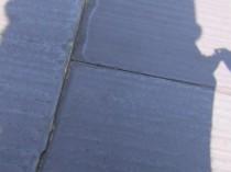 屋根 苔・藻