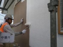 外壁 中塗り (5)
