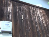 東 1F外壁 塗膜剥離