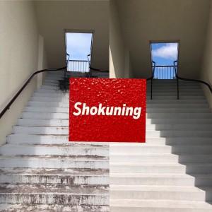 shokunig