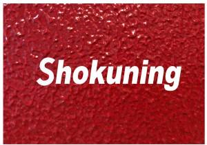 ShokuningのHP開設!!